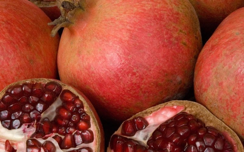 Wonderful Hardy Pomegranate - Punica granatum 'Wonderful'