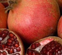 Wonderful Hardy Pomegranate