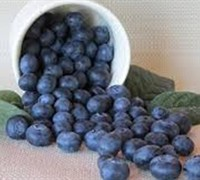 Shop Becky Blueberry - 2.5 Quart