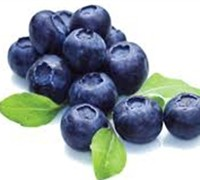 Shop Georgia Gem Southern Highbush Blueberry - 1 Gallon