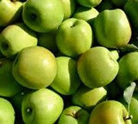 Shop Mutsu Apple - 5 Gallon